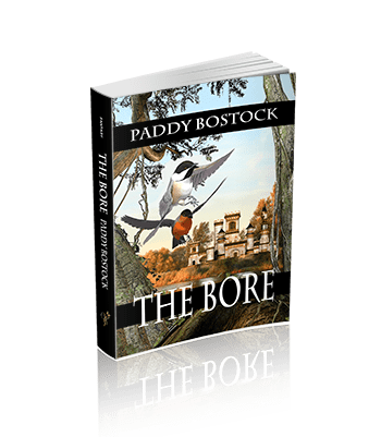 The Bore (The Magical Mysteries Series)