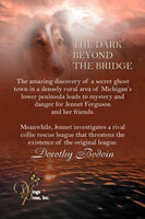 The Dark Beyond the Bridge (The Foxglove Corners Series Book Book 24)