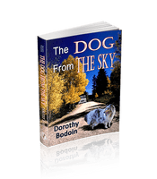 The Dog From The Sky (The Foxglove Corners Series Book 9)