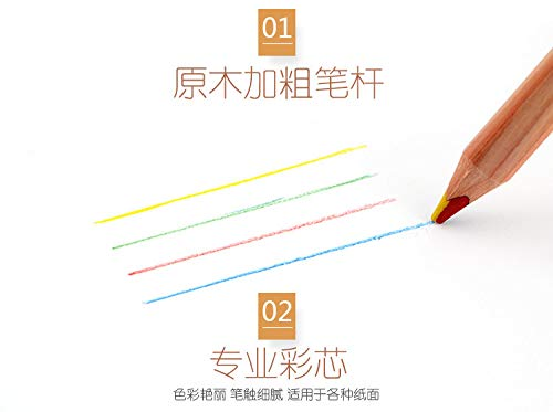 Rare Multi Colour Pencil Rainbow Natural Cedar Wood Jumbo Thick Pencils X6 Set!