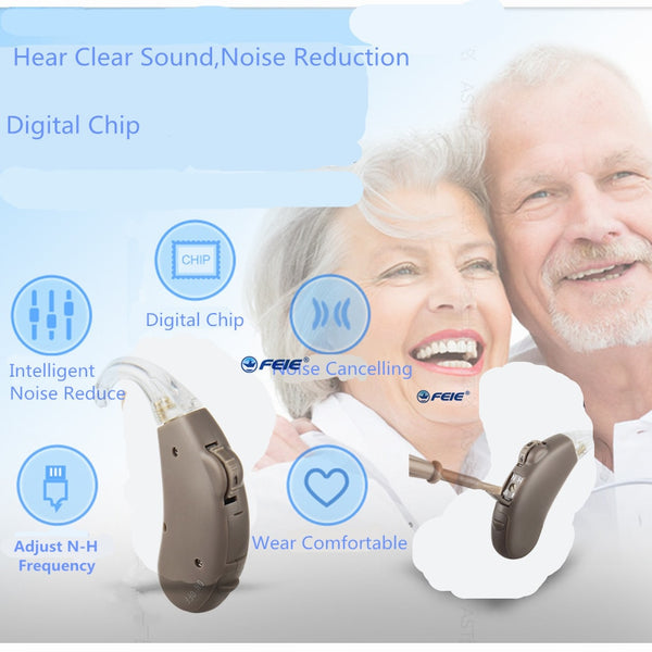 Digital Personal Sound Amplifier for Mild to Moderate Hearing Loss
