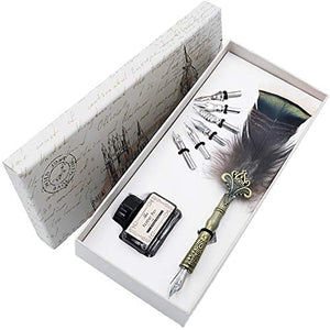Dip Pen Set Writing Quill Feather Pen Ink Set with 6pcs Nibs Calligraphy Pen in Gift Box HO-Q-302