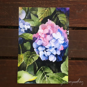 Dark Flower Postcards
