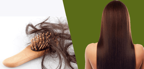 6 WAYS TO REDUCE HAIR LOSS & PROMOTE NATURAL HAIR GROWTH