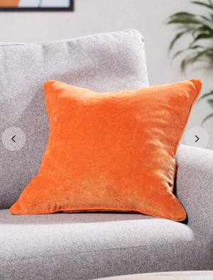 Velour Designer Cushion