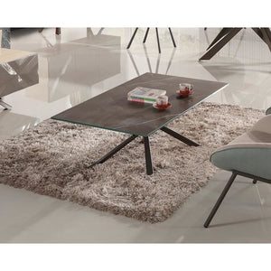 panthar-coffee-table-1