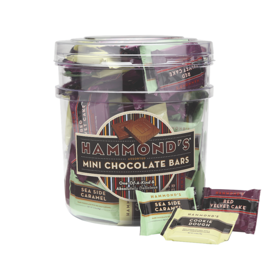 Hammond's Candies - Mini Chocolate Bars Assorted Tub