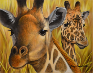 What's Up - Giraffes Original by Jerry Gadamus