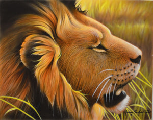 Savannah Sun - Lion Original by Jerry Gadamus