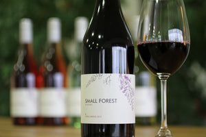 Small Forest Shiraz 2017 750ml