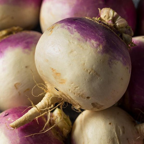 Locally Grown Texas Turnips - Hardie's Direct, Dallas TX
