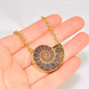 Charles Albert Alchemia Fossil Ammonite Necklace