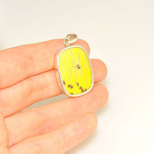 Sterling Silver Yellow Butterfly Wing Pendant