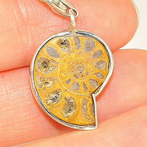 Sterling Silver Fossil Ammonite Charm/Pendant