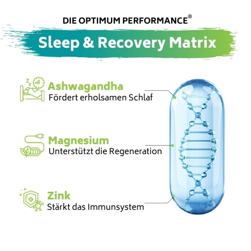 Sleep & Recovery Matrix