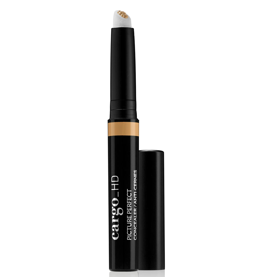 HD Picture Perfect Concealer