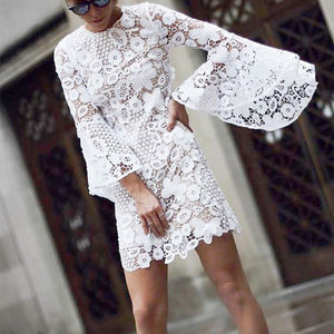 Modern Lace Long Sleeve Round Neck Dresses