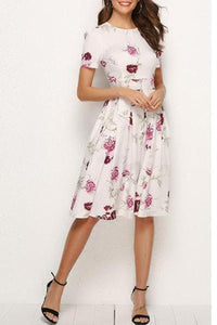 Round Neck  Abstract Print Printed Skater Dress