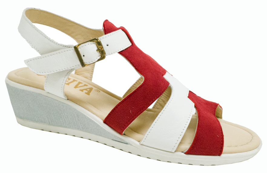 TL-9613 - White/Red