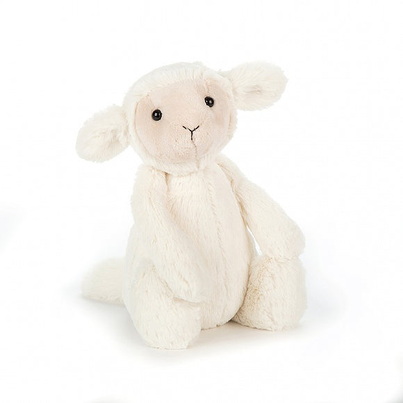 Medium Bashful Lamb