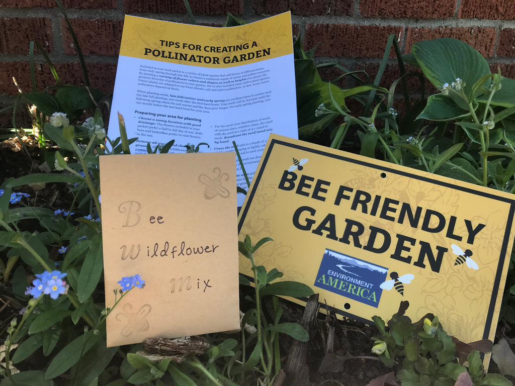 Bee Friendly Garden Kit