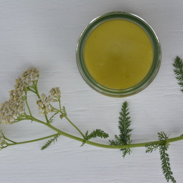Country Kitchen - Kawakawa and Hemp Healing Balm