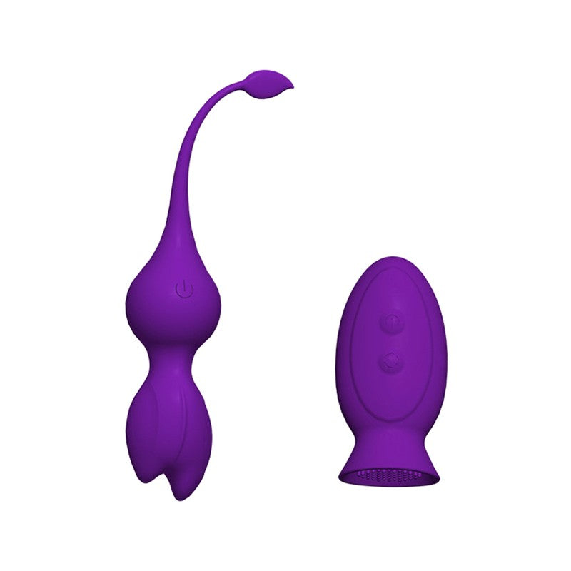 Waterproof G Spot Silicone Wireless Remote Vibrator Quiet Motor 12 Vibrations Anal Egg Vibrator Clitoris Vagina Stimulation Sex Toy for Couples Women