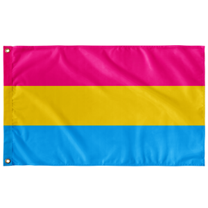 3 x 5 Foot Pansexual Flag