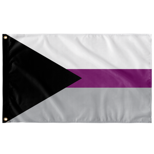 3 x 5 Foot Demisexual Flag