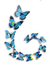 Load image into Gallery viewer, Butterfly Bliss - Bright Edition - 12 piece set