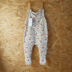 Red Robin Footed Romper