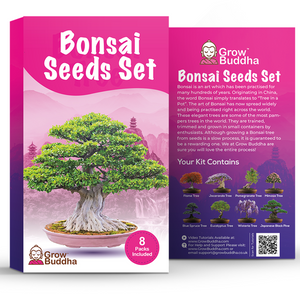 Grow 8 Bonsai Trees Seeds Set
