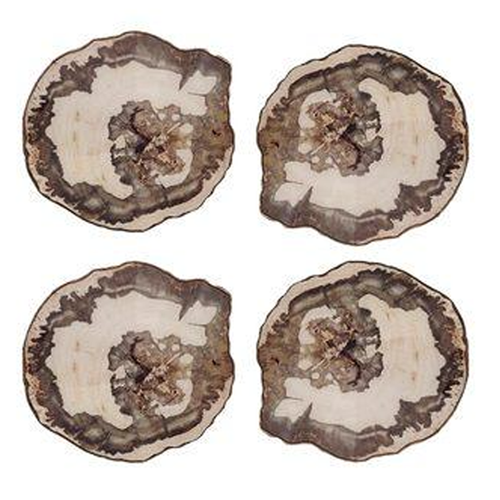 PETRIFIED WOOD COASTERS, SET OF 4