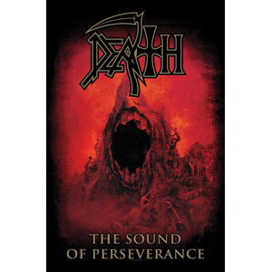 The Sound Of Perseverance Poster Flag