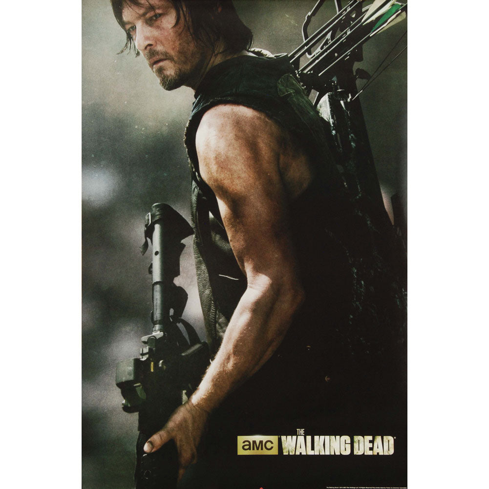 Daryl Bow Domestic Poster