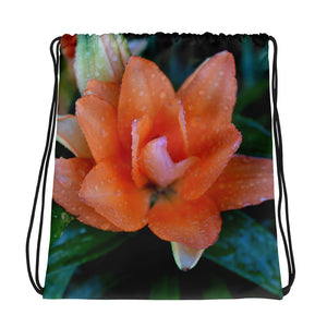 Stolen Tulip Drawstring Bag - Aly Pictured It