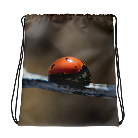 Ladybug Drawstring Bag - Aly Pictured It