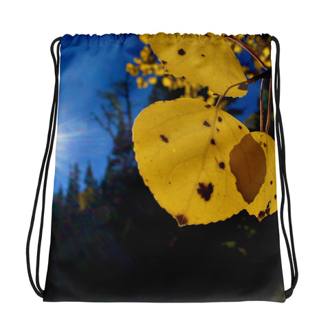 Fall Leaf Drawstring Bag - Aly Pictured It