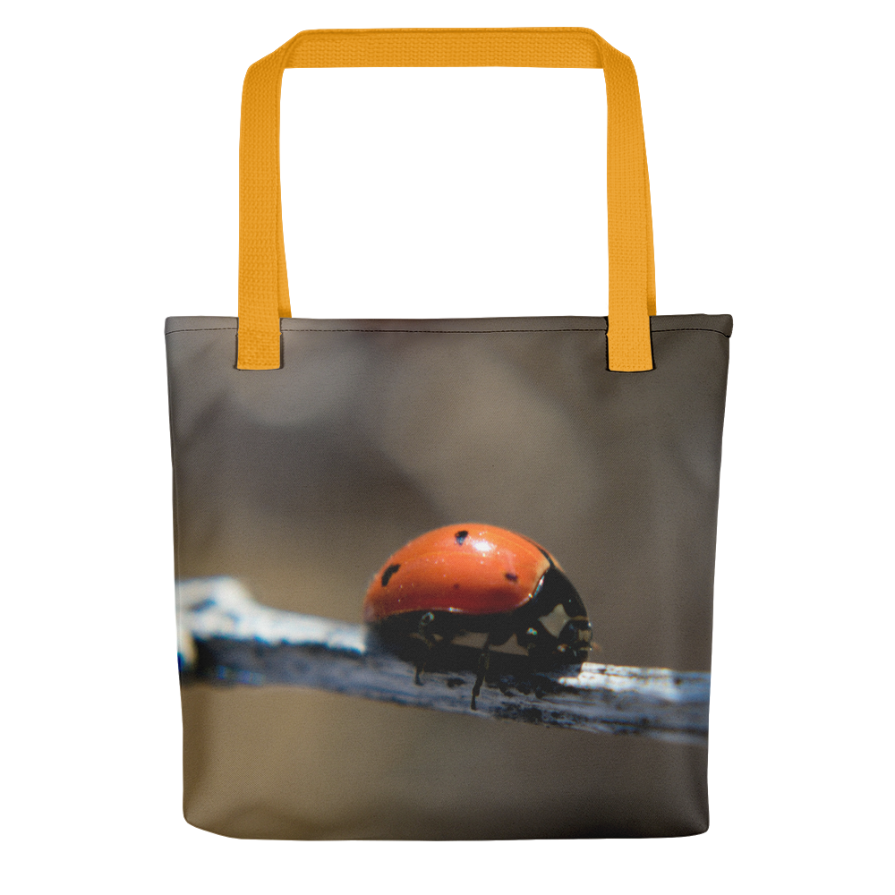 Ladybug Tote - Aly Pictured It