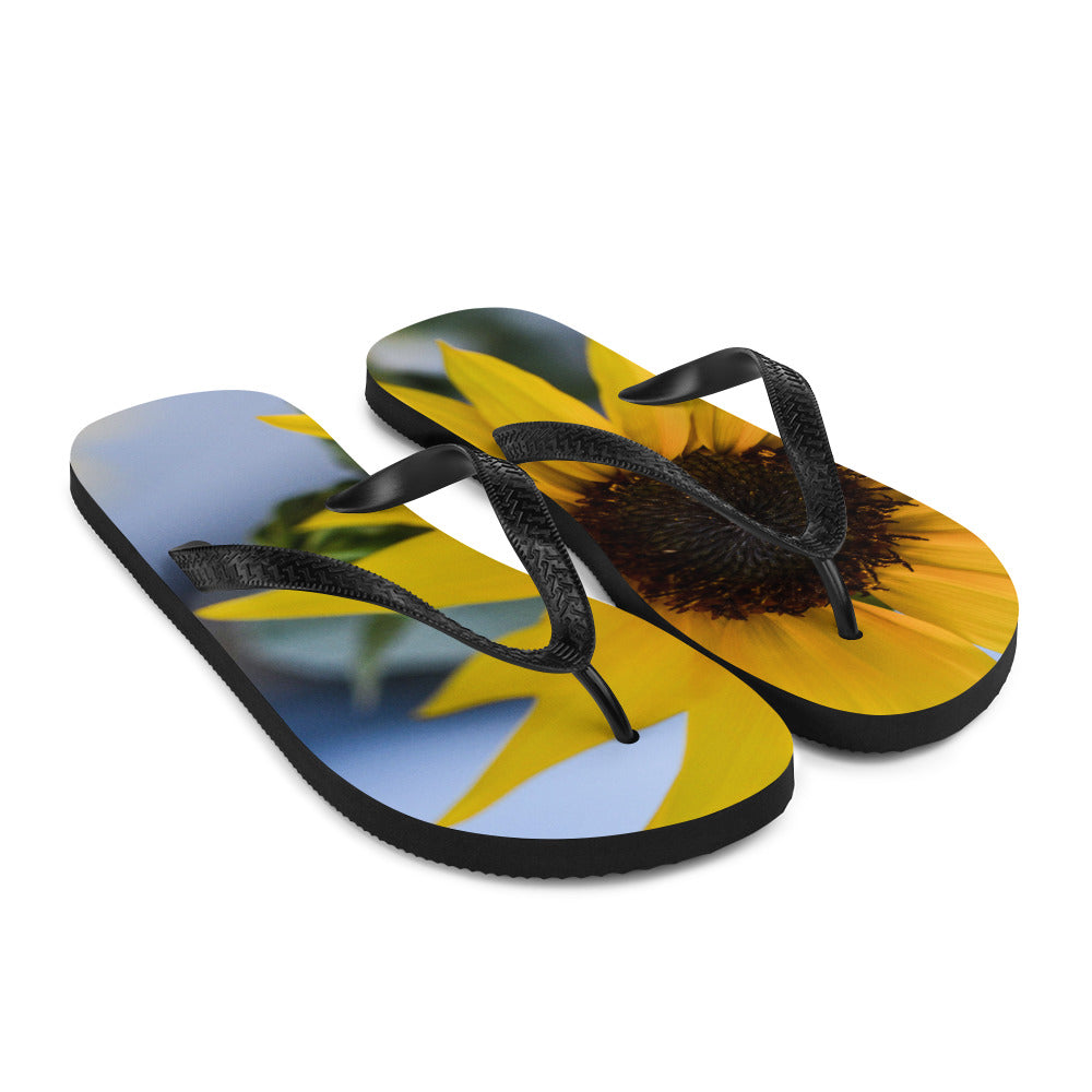 Helios Flip-Flops - Aly Pictured It