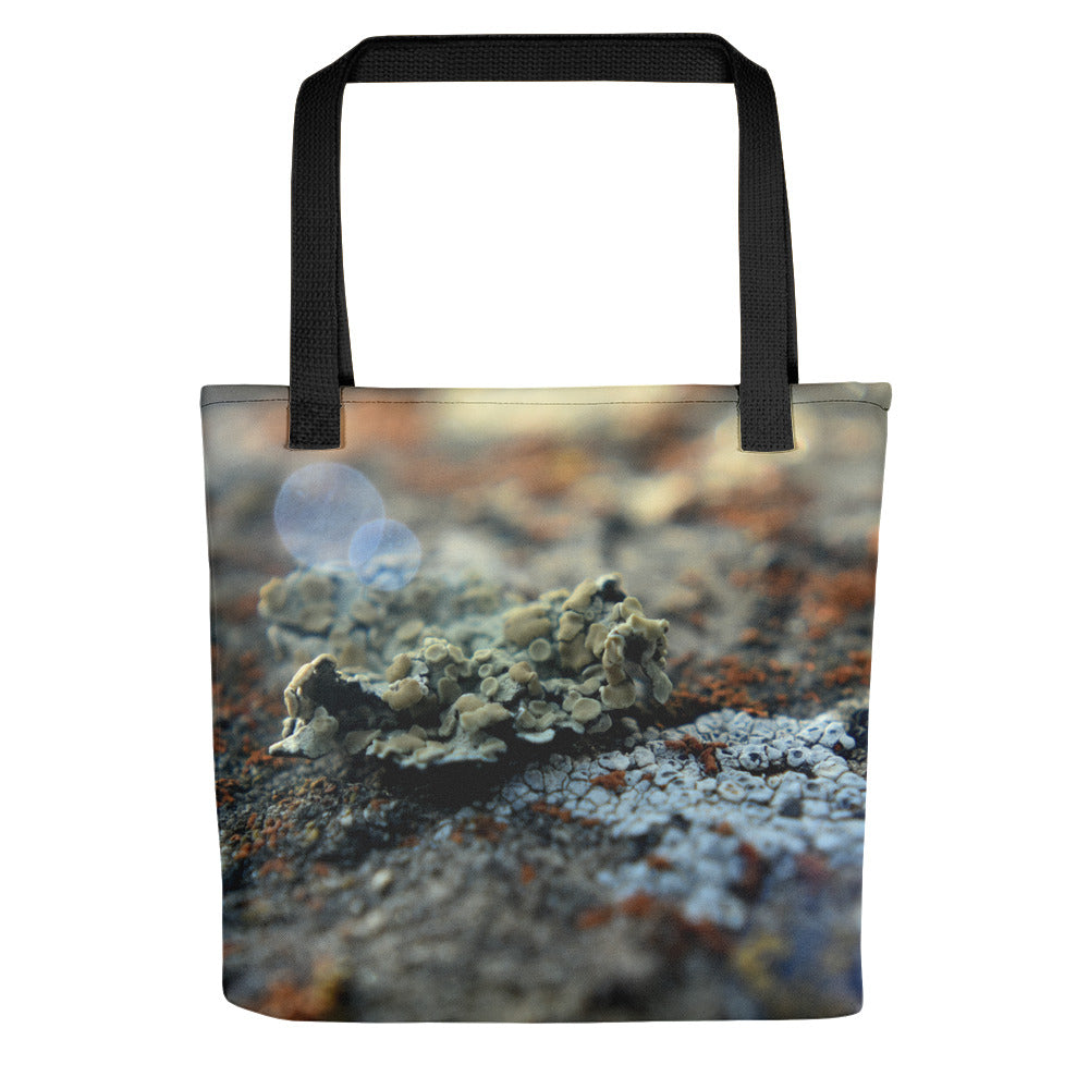 Lichen Tote - Aly Pictured It