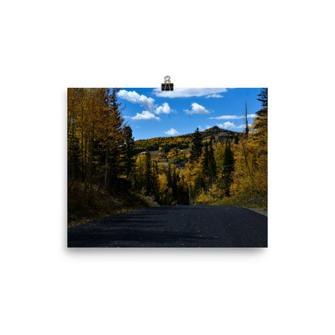 Blue Skies in Fall Poster - Aly Pictured It