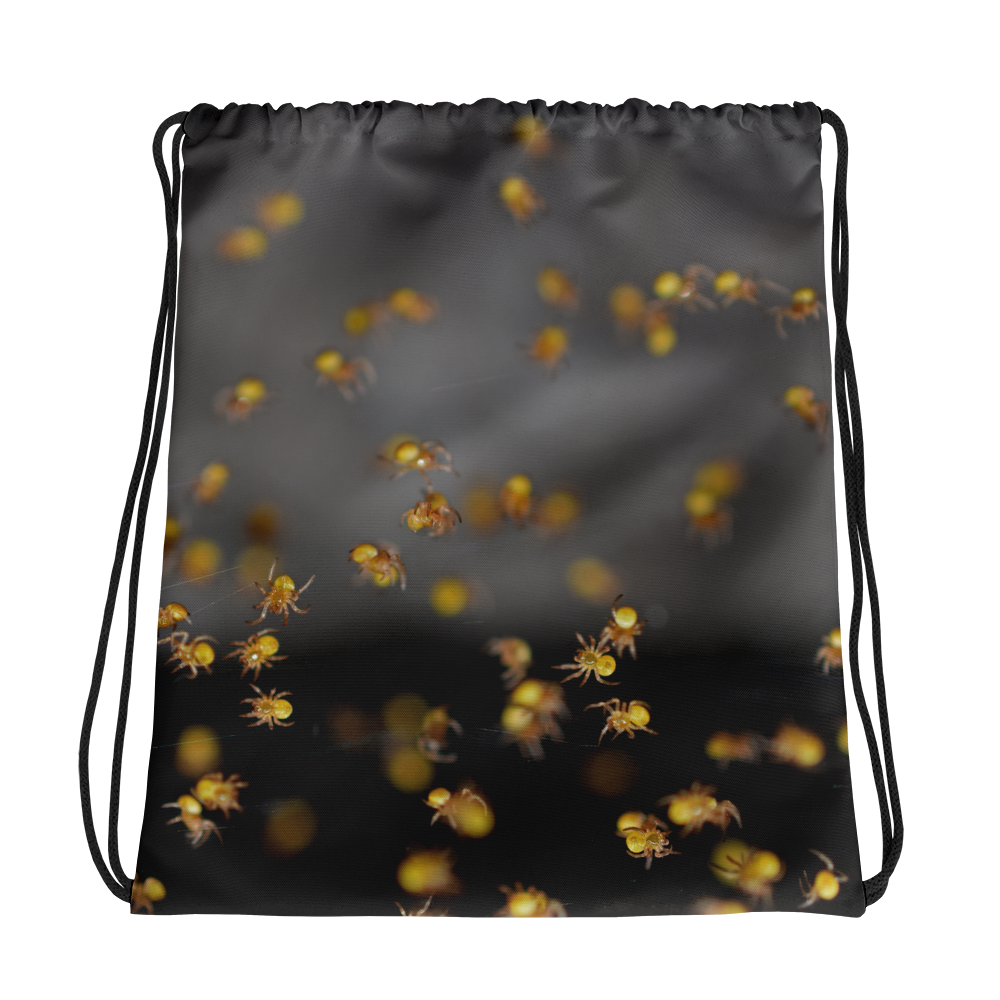 Crawling Spiders Drawstring Bag - Aly Pictured It