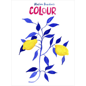 'Colour' by Marion Deuchars Shop at the Old Fire Station