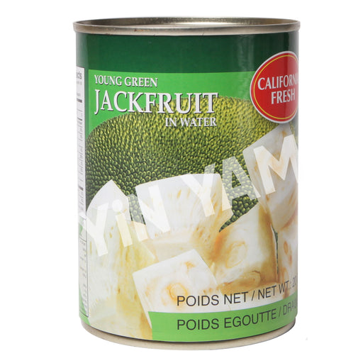California Fresh Young Green Jackfruit in Water 565g - Yin Yam - Asian Grocery
