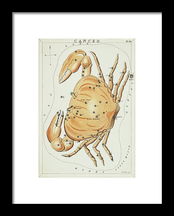 Vintage Astronomy Chart of Cancer Constellation - Framed Print from Wallasso - The Wall Art Superstore