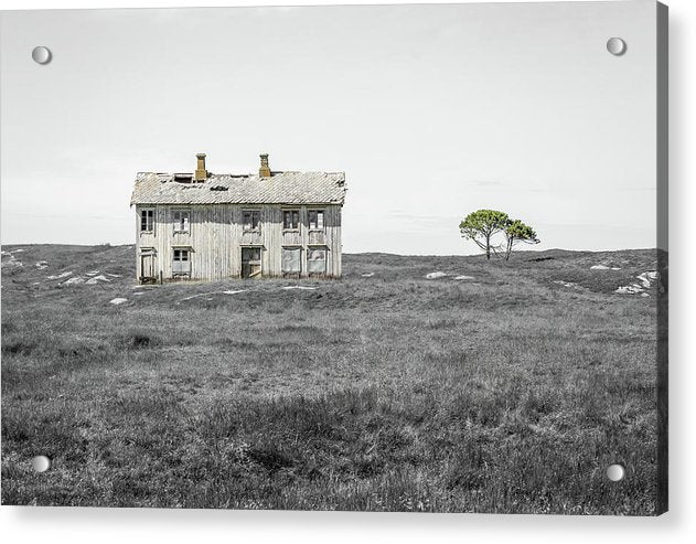 Abandoned House With Pops of Yellow and Green - Acrylic Print from Wallasso - The Wall Art Superstore