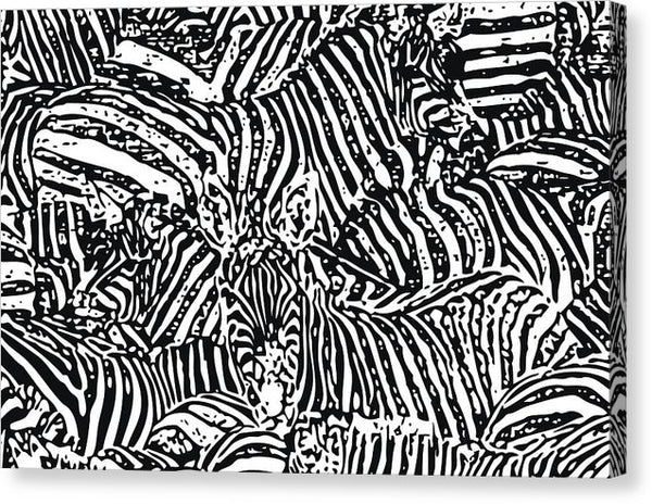 Abstract Black and White Zebra Design - Canvas Print from Wallasso - The Wall Art Superstore