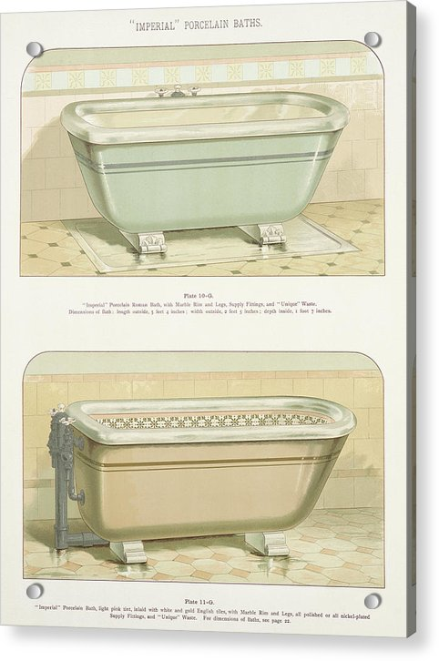 Antique Bathtub Illustration, 1888 - Acrylic Print from Wallasso - The Wall Art Superstore