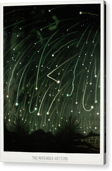 Antique Illustration of November Meteor Shower, 1881 - Acrylic Print from Wallasso - The Wall Art Superstore